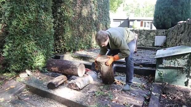 Ağaç kütüğünden öyle bir şey yaptı ki
