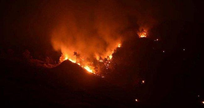 Tokat'ta orman yangını!