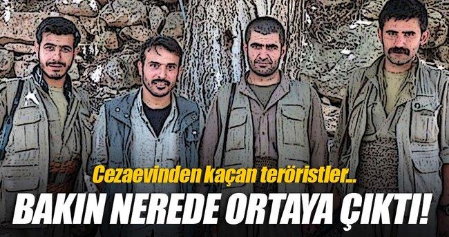 Diyarbakır Cezaevi'nden kaçan 4 PKK'lı Kandil'de ortaya çıktı