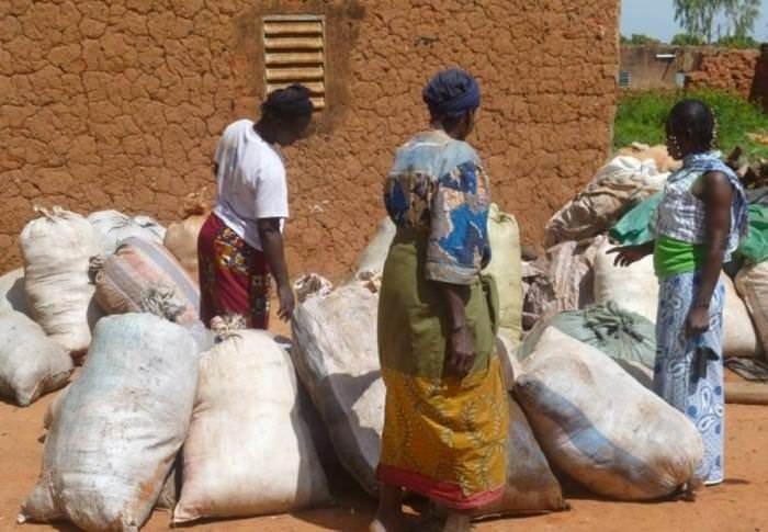 Afrikalı Kadınların Mucizesi