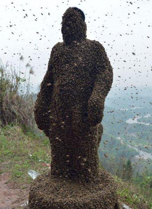 Vücudunu 460 bin arıya emanet etti