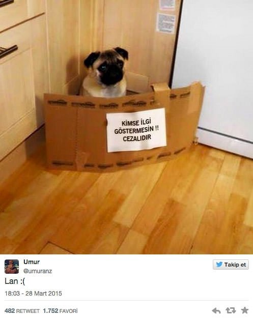 Sosyal medyada güldüren tespitler!