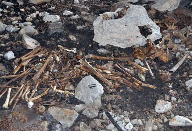 Tunceli'de bir mağarada kemik bulundu