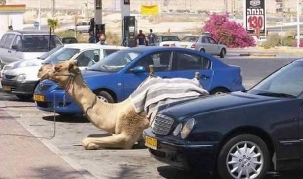 Dubai'den sıradışı fotoğraflar