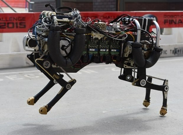 Robotlar yarıştı!