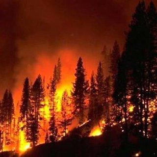 İspanya'da orman yangını: 2 binden fazla kişi evini terk etti!
