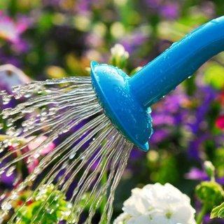 Bahçeyi suladığı su kokunca fark etti...