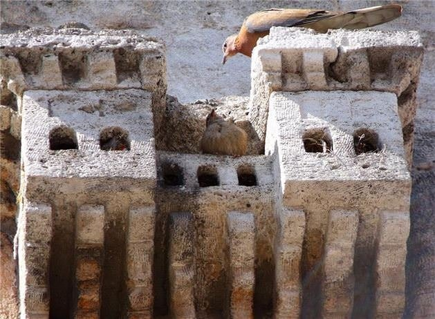 Osmanlı'nın küçük sarayları