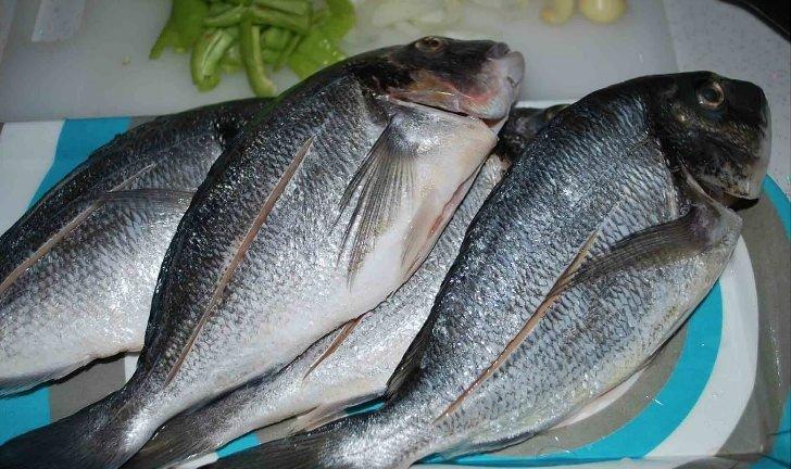 Taze balık nasıl anlaşılır?