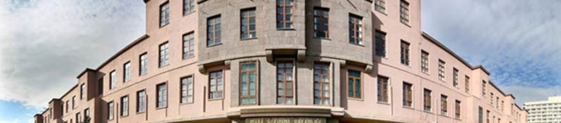 Savunma Bakanlığı'ndan flaş TL kararı
