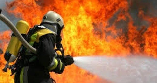 Pamukkale'de orman yangını