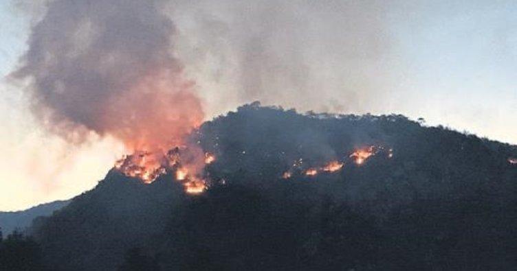 Karşıyaka'da korkutan yangın