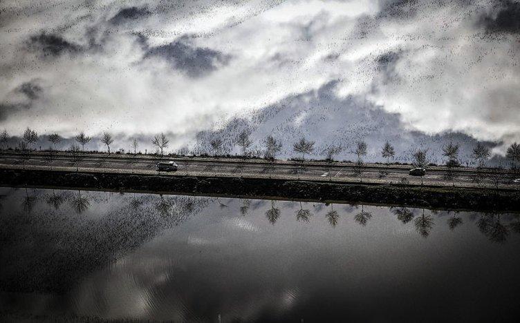 'Yılın fotoğraf'ına aday 47 fotoğraf