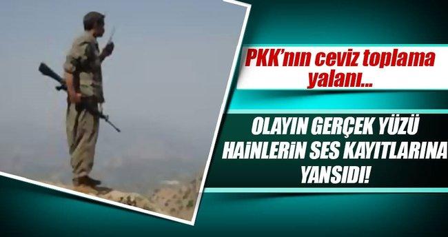 PKK'nın ceviz yalanı telsiz konuşmalarına yansıdı