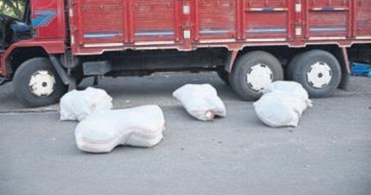 Mersin'de 164 kg esrar ele geçirildi