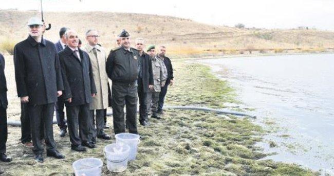 Kırıkkale'de 100 bin pullu sazan baraj gölüne bırakıldı