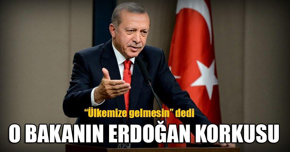 Avusturyalı bakanın Erdoğan korkusu!