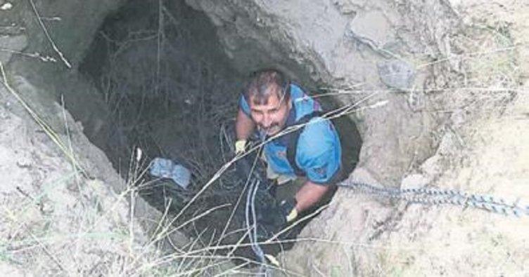 Kaplumbağayı itfaiye kurtardı