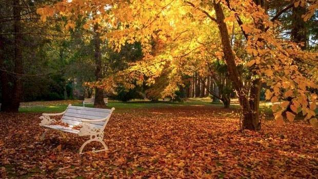 Sonbaharda gidilebilecek cennet köşeler
