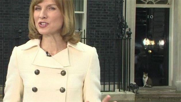 İngiltere Dışişleri Bakanlığı'nda bir kedi kadroya alındı