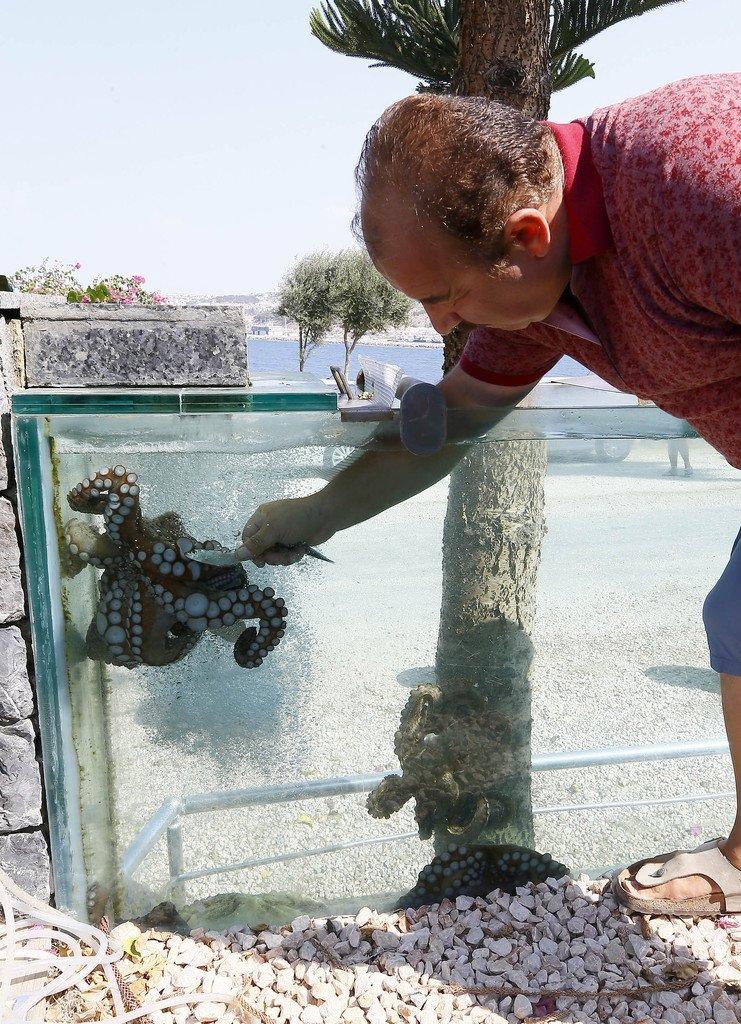 Bu köşkte tek balığın maliyeti 20 bin lira!