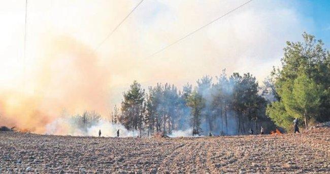 7 hektar orman alanı kül oldu