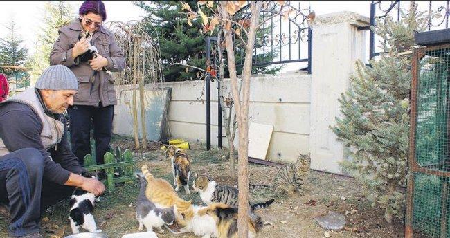 Öğretmen çiftin bahçesi 100 hayvanın yuvası oldu