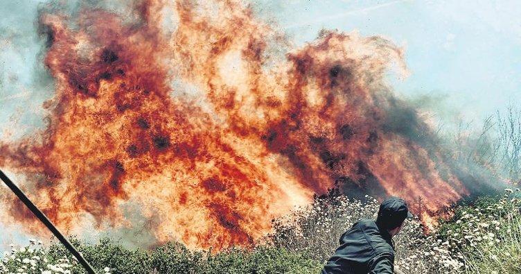 Orta Afrika yangını uzaydan görünüyor