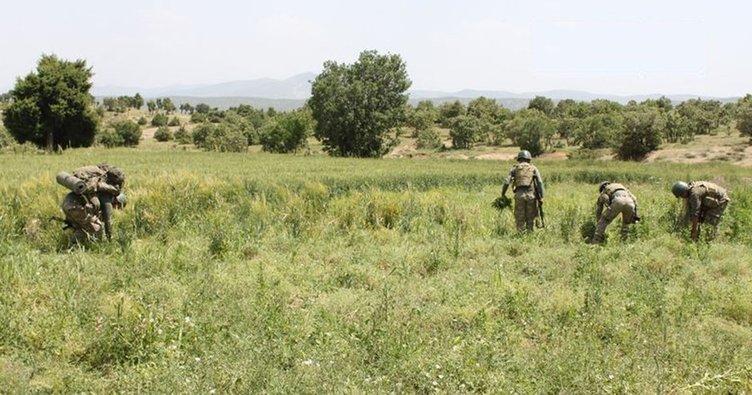 Diyarbakır'da 10 bin güvenlik personeliyle terör operasyonu
