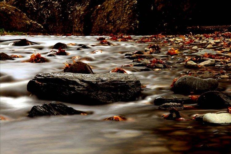 Nebiyan Dağı'nda sonbahar