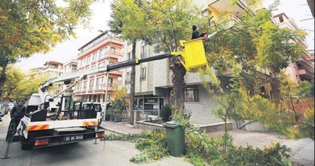 300 ton odun evlere teslim