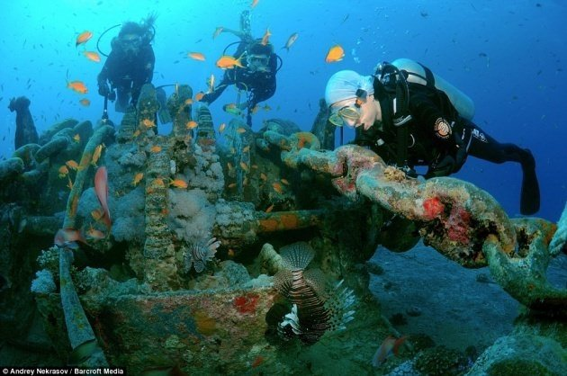 İngiliz mühimmat gemisi Mısır'da keşfedildi