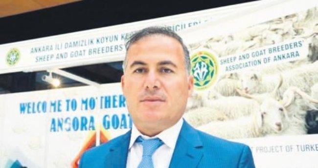 Ankara Keçisi cevap bekliyor