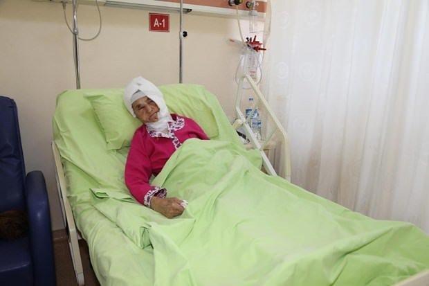 Rize'de ayının saldırısına uğrayan yaşlı kadın ağır yaralandı