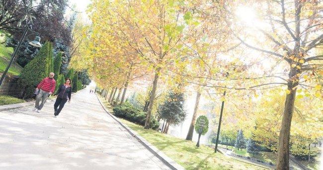 Parklarda güz güzelliği