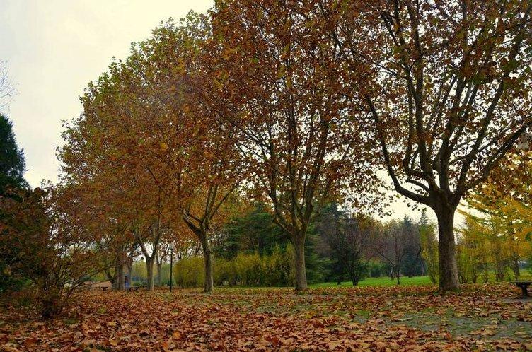 Bursa'da sonbaharın büyüsü