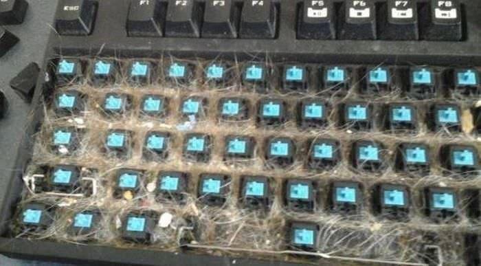 Elektronik düşmanları.