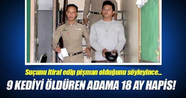 9 kediyi öldüren adama 18 ay hapis cezası