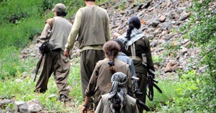 Kato Dağı'nda 3 PKK'lı öldürüldü