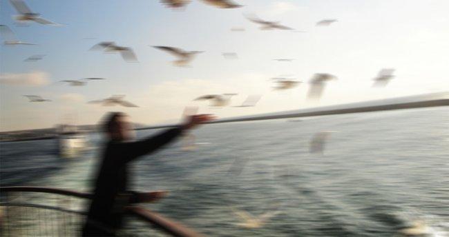 Martıya simit atarken denize düştü