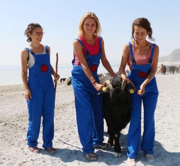 3 üniversiteli gönüllü çoban oldu