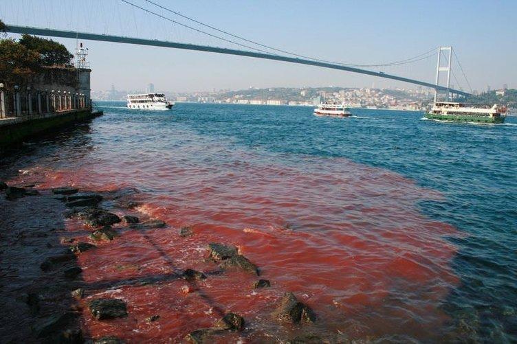 İstanbul Boğazı yine kan gölüne döndü