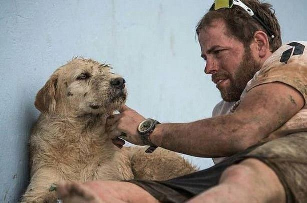 Köpek Arthur'un inanılmaz hikayesi!