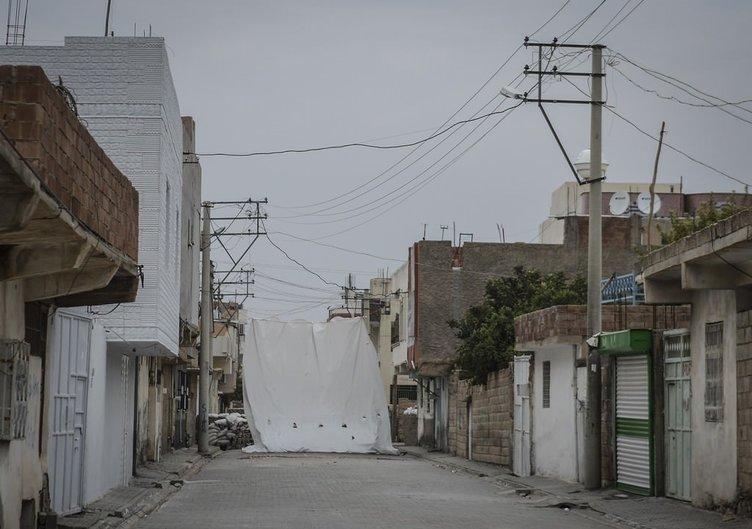 Nusaybin'de terör örgütüne yönelik operasyon