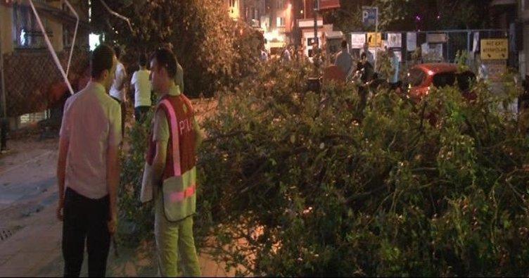 Kadıköy'de ağaç devrildi: 3 yaralı!