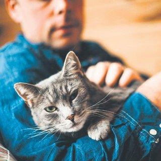 Kediler insanları sevmez ki!