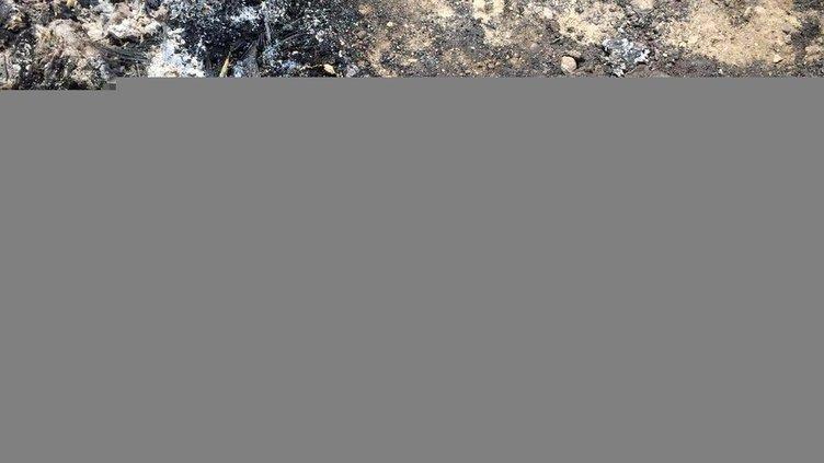 PKK kaçırdığı muhtarı yakarak öldürdü!