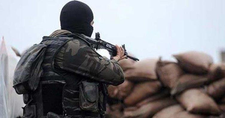 Ağrı ve Hakkâri'de 9 terörist öldürüldü
