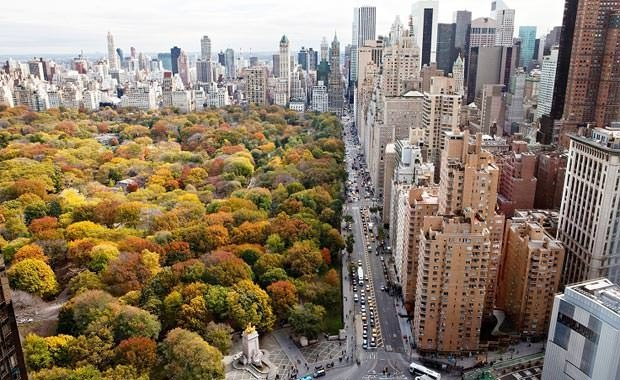 New York'ta sonbahar