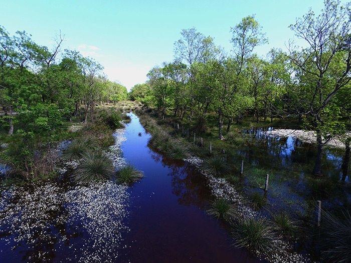 Kızılırmak Deltası havadan görüntülendi
